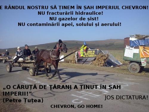 caruta-de-tarani-pungesti-chevron-go-home-jos-dictatura
