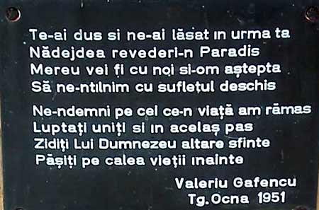 targu-ocna-martiri-(3)