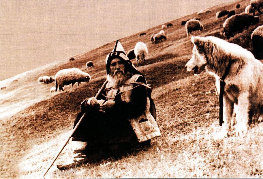 ilie-cleopa-cu-oile-schitul-cozancea